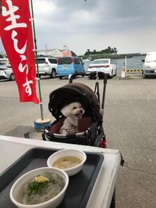 用宗漁港.jpg